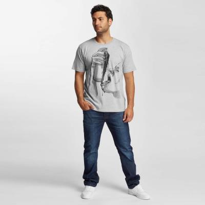 dangerous-dngrs-blacktaste-t-shirt-grey-l3